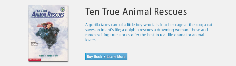 Ten True Animal Rescues